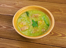 New Mexican Green Chile Stew Royalty Free Stock Images