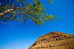 New Mexico. Sky, tree and mountain in New Mexico stock photos