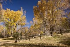 New Mexico Autumn Royalty Free Stock Photo