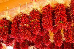 Free New Mexico Chilies Peppers Royalty Free Stock Image - 21780396