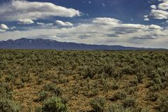 New Mexico Desert. Endless New Mexico Desert with mountains in background and blue and cloudy sky above royalty free stock image