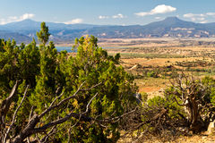 New Mexico desert landscape Stock Image