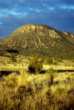 New Mexico Desert Mountain Royalty Free Stock Photos