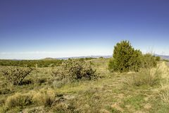 New Mexico Desert. A view of the New Mexico Desert royalty free stock image
