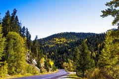 New Mexico Fall stock photo