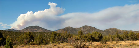 New Mexico Forest Fire Stock Images