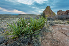 New Mexico Landscapes Stock Photography