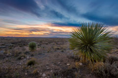 New Mexico Landscapes Stock Image