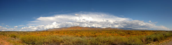 New Mexico Pano Royalty Free Stock Photography