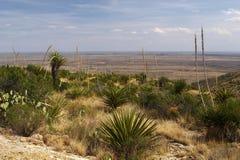 New-Mexiko Stockfotografie