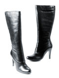 New modern female footwear Stock Images