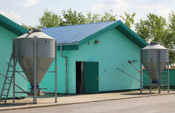 New modern pig farm Royalty Free Stock Photos