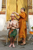New monk. Thai man gets his head shaved by a monk during a Buddhist ordination ceremony Royalty Free Stock Photo