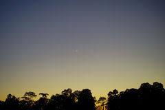 New moon at sunset and tree Stock Photos