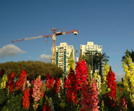 New neighborhood. Crane, new buildings and garden Royalty Free Stock Photo