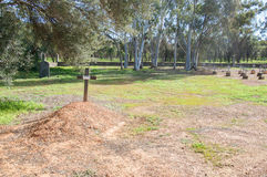 New Norcia Cemetery: Burial Mound. NEW NORCIA,WA,AUSTRALIA-JULY 15,2016: Burial mound with wooden cross at the New Norcia Cemetery with treed landscape in the Royalty Free Stock Images