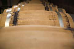 New oak barrels of wine lying in a row Royalty Free Stock Image