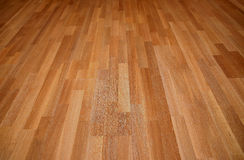 New oak parquet Royalty Free Stock Photos