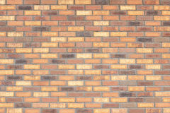 New orange bricks wall texture Royalty Free Stock Images