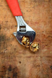 New orange pliers and walnut Stock Image