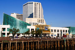 New Orleans - Aquarium of the Americas Royalty Free Stock Photography