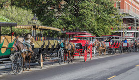 New Orleans Carriage Rides Royalty Free Stock Photo