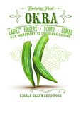New Orleans Culture Collection Okra. Flowering Plant Key Ingredient Louisiana Cuisine Gumbo Stock Photography