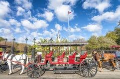 NEW ORLEANS, DE V.S. - FEBRUARI 2016: Rood paardvervoer langs Hefbomen royalty-vrije stock afbeelding
