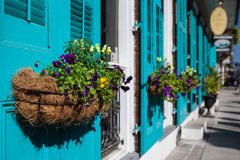 New Orleans Flowers. Flowers in baskets hang off shutter doors during Mardi Gras in New Orleans, Louisiana, USA royalty free stock photo