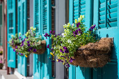 New Orleans Flowers. Flowers in baskets hang off shutter doors during Mardi Gras in New Orleans, Louisiana, USA Stock Photos