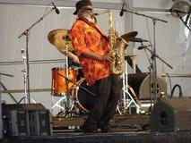 New Orleans jazz & arvfestival Arkivbild