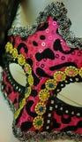 New Orleans Mardi Gras MASKERING Royaltyfri Fotografi