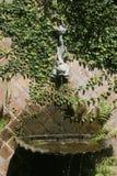 New Orleans springbrunn Arkivfoton