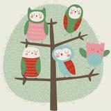 New owls on tree. Cute owls sitting on a tree. Cartoon style royalty free illustration