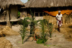 New paddy rituals Royalty Free Stock Images