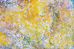 New painting in attractive colour for your new interior. High resolution photo stock photos