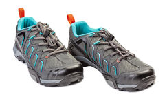 New pair of sport shoe for mountain cycling. Stock Photos
