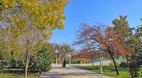 New park in the mountains. Ashkhabad. Turkmenistan. Autumn view. New park in the mountains. Ashkhabad. Turkmenistan royalty free stock images