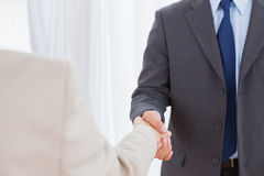 New partners shaking hands Royalty Free Stock Photo