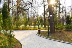 New pathway and beautiful trees track for running or walking and cycling relax in the park on green grass field in the city park stock photos
