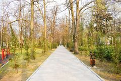 New pathway and beautiful trees track for running or walking and cycling relax in the park on green grass field in the city park stock photography