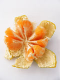 New peeled tangerine pictures from the skin for logo and graphics Royalty Free Stock Images