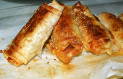 New pictures of homemade poğaça and burrito. 1 royalty free stock images