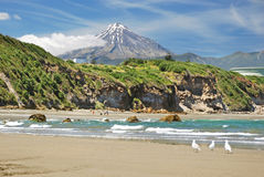 Free New Plymouth Beach Royalty Free Stock Photography - 28499947