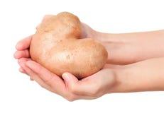 New potato Royalty Free Stock Image