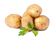 New potato and green parsley Stock Photography