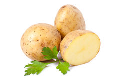 New potato and green parsley Stock Images