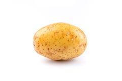 New potato isolated Royalty Free Stock Photography