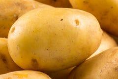 New potato Royalty Free Stock Photography