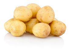 New potato isolated on white background. New potato isolated on a white background royalty free stock photos